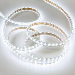 Ruban LED de chantier 7W/m 25m WOLTZ
